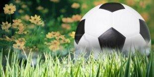 Jardinería futbolística