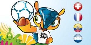 Mundial Brasil 2014: Grupo E